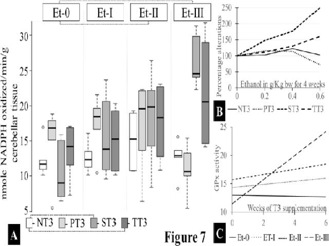 Box and whisker plot of cerebellar lipid peroxidation